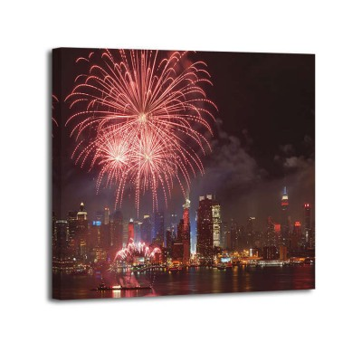 Clarence Homnes - 4th July Fireworks in NYC