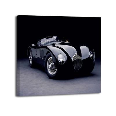Don Heiny - Jaguar CType2