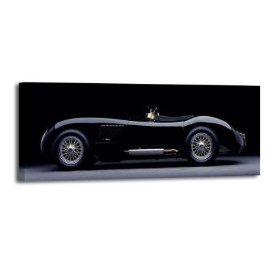 Don Heiny - 1951 Jaguar CType