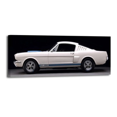 Don Heiny - 1965 Ford Shelby GT350 Mustang