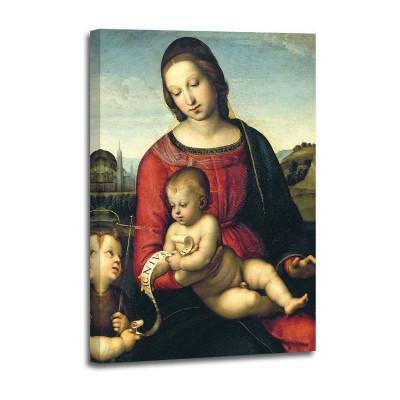 Raffaello - Madonna Terranouva (det)