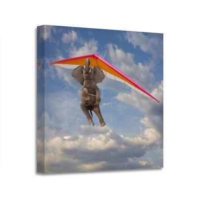 John Lund - Flying Elephant 3D