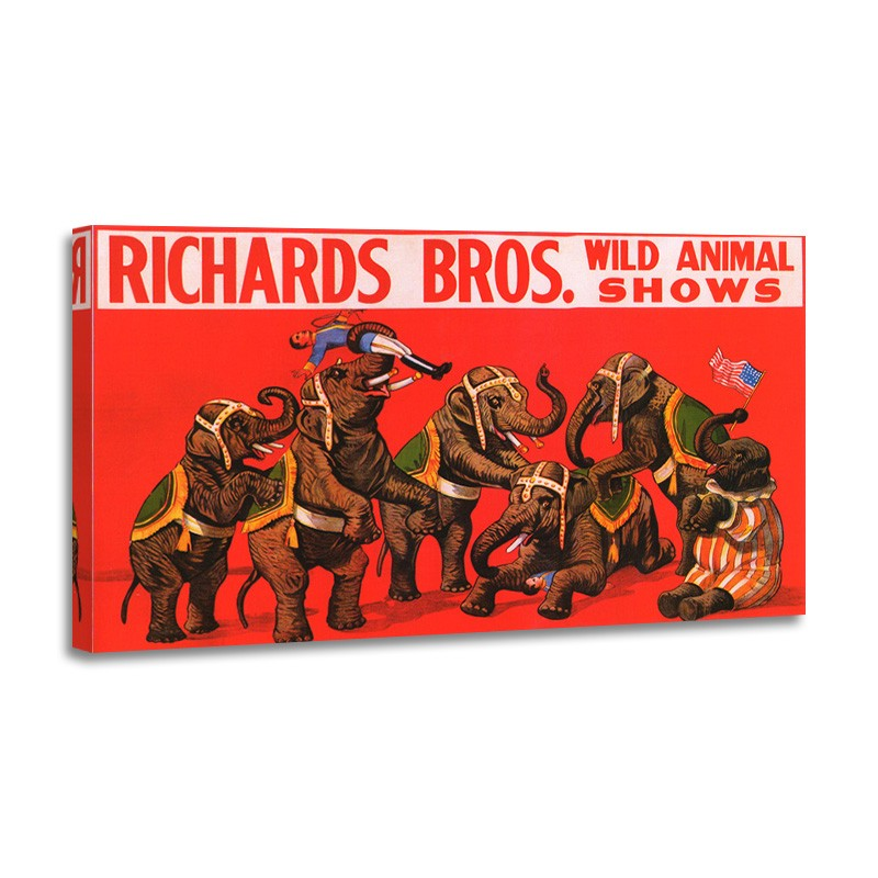 Anónimo - Richard Bros Wild Animal Shows 1925