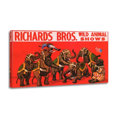 Anónimo - Richard Bros Wild Animal Shows 1925