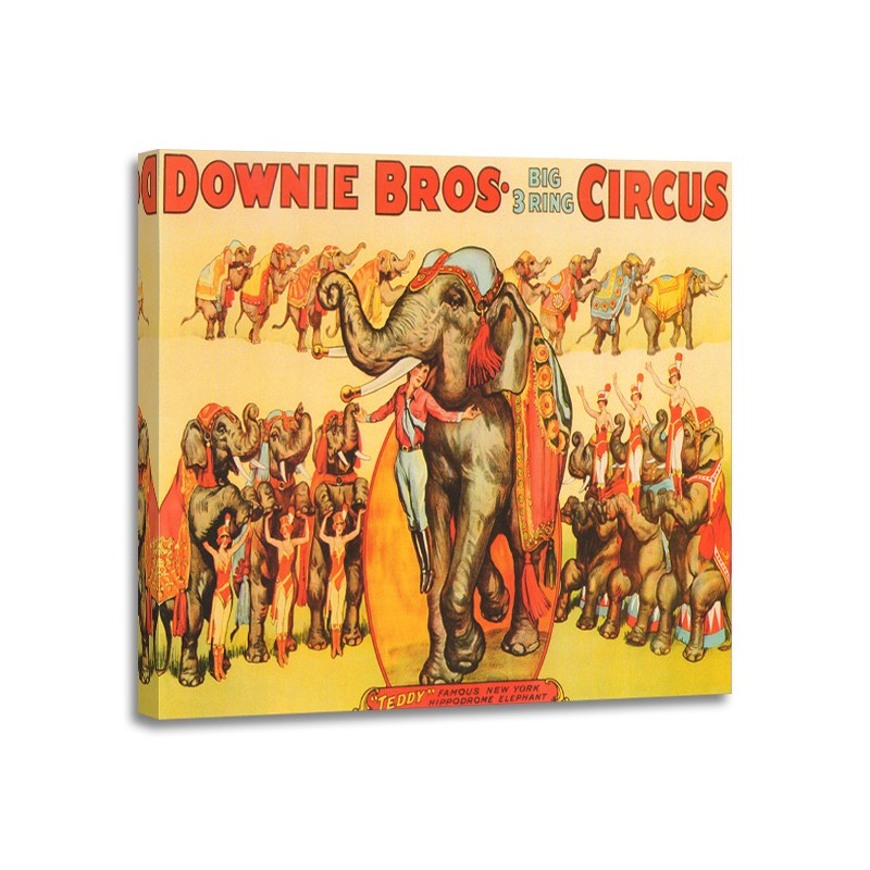 A - Downie Bros Big 3 Ring Circus 1935