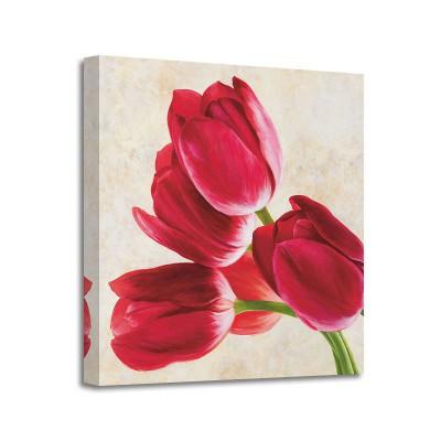 Luca Villa - Tulip Concerto (det)